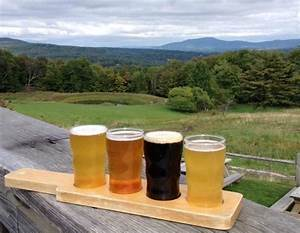 Beer tasting at the brewery on the outdoor deck - Picture