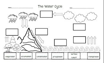 the water cycle cut and paste by the librarian tpt