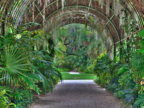mckee botanical gardens here are 10 of the most beautiful gardens that florida has