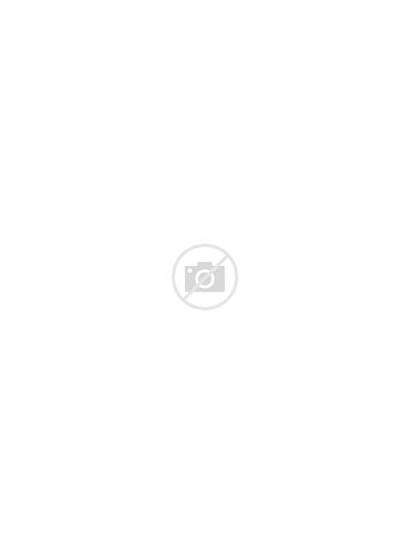 Patriotic Labels Sheet Label