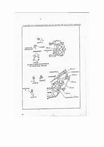 Manual Servi U00e7o Yamaha Rd 350 35 Hp Guia Parte2