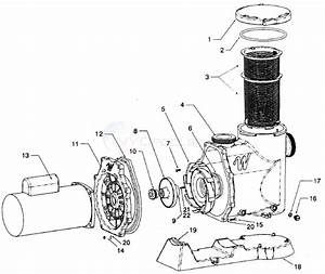 Waterway Svl56 Pump  Mustang Inground  Parts
