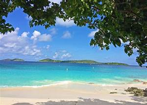st john usvi beaches st john usvi fun guide With honeymoon beach st john