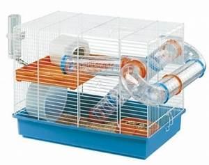 Quelle cage choisir ? Forum Hamster Hamster Wamiz