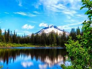 Beautiful Natural Landscapes