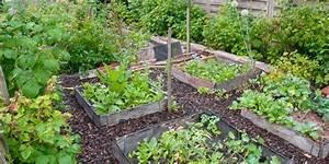 Faire Un Petit Potager En Carré : comment faire un jardin potager en permaculture marie claire ~ Melissatoandfro.com Idées de Décoration