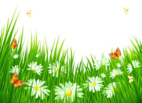grass clipart free grass with white flowers png clipart gallery