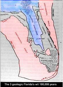 Structure and formation of recent limestone (Miami & Key ...
