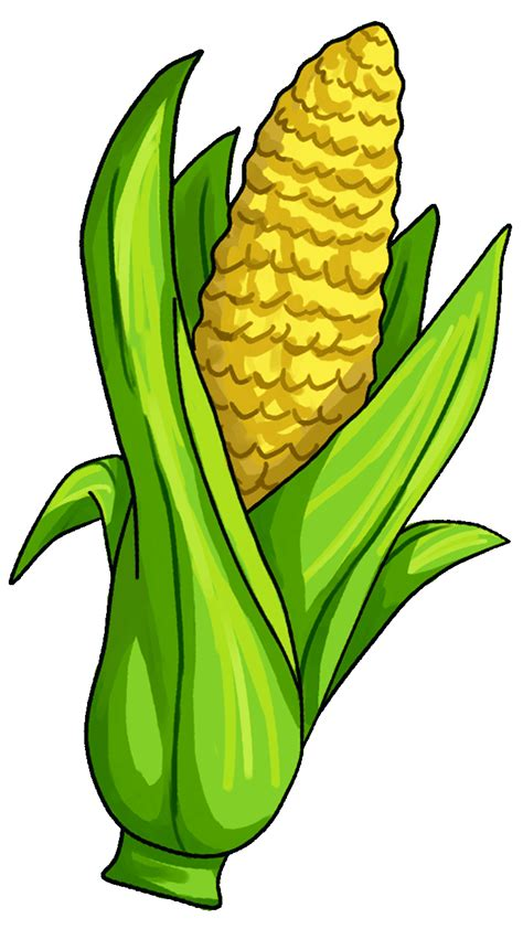 Corn Clip 15 Surprising Corn Clipart For Free Fruit Names A Z With
