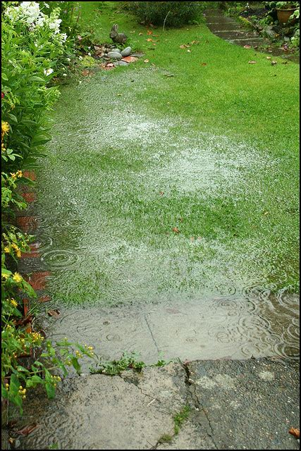 5 Poor Drainage Solutions To Divert Water Away From Your