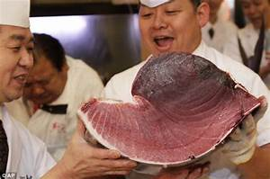 Bluefin tuna price: Fish destined for sushi slicer's cost ...