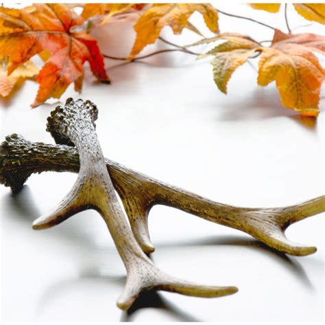 stick on hangers 11 quot resin deer antler 2514 238 craftoutlet 2514