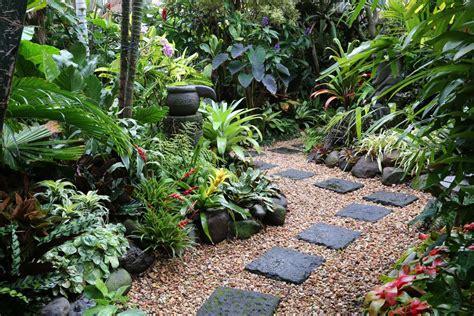 tropical garden image gallery dennis hundscheidt