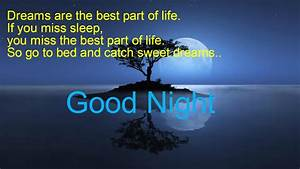 Best Lovely good Night Shayari,messages,Sms For girlfriend ...