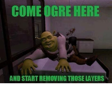 Dank Memes Definition - come ogre here and startremovingthose layers dank meme on sizzle