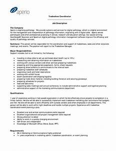 business sales plan business templates best solutions of With salesperson business plan template