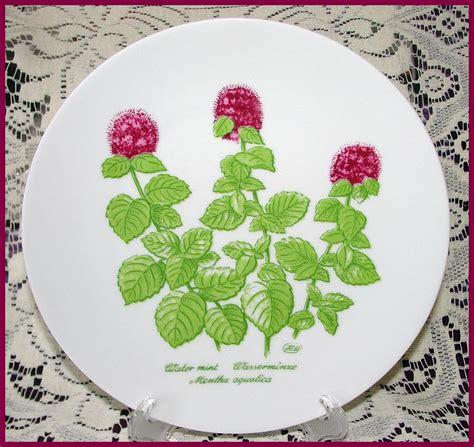 bareuther waldsassen wild herb plates set