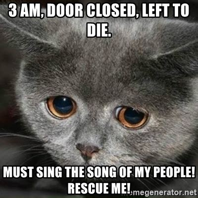 3 am door closed left to die must sing the song of my people rescue me sad cute cat
