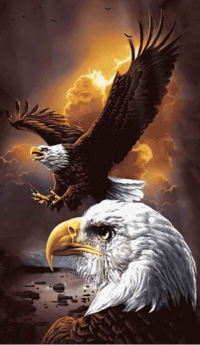 Eagles Painting Eagle Bald Owl Snow Wolf