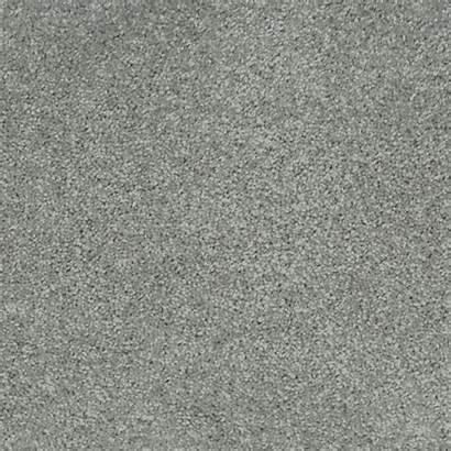 Carpet Revive Grey Misty Chelsea Mist Sucasa