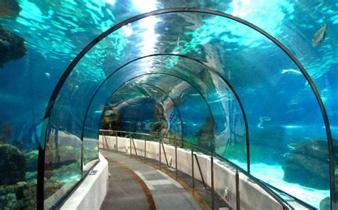 indias  underwater rail tunnel    metro