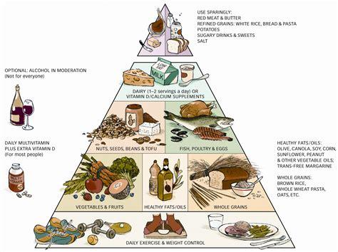 ideal cuisine healthy food pyramid healthy food house
