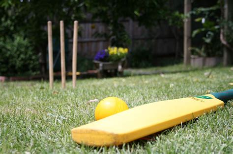 Backyard Cricket Set by Backyard Cricket Outdoor Furniture Design And Ideas