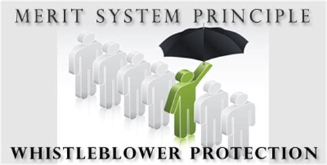 mspb merit system principles whistleblower protection