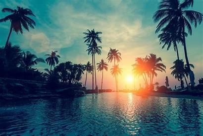 Sunset Desktop Tropical Pc 1920a Palm 1080