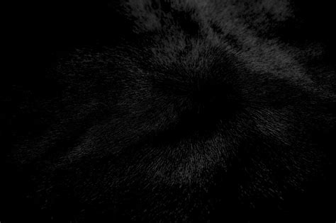 Black And White Wallpaper Images Black Pic Qygjxz