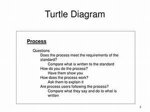 Ppt - Turtle Diagram Powerpoint Presentation  Free Download