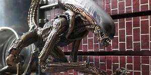 Aliens Series 3 Review: Dog Alien | Kastor's Korner