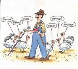 30 thanksgiving jokes for a laugh