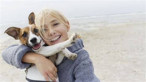25 dogs who clearly love hugs
