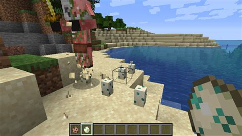 piglin zombified destroying egg mc piglins attracted turtle eggs