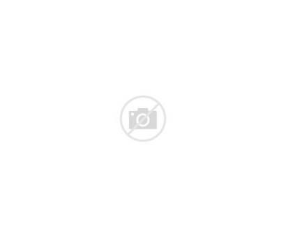 Shape Face Know Collage Elegant Faceshape