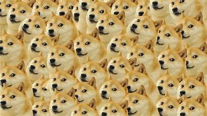 Meme Dodge Doge Wallpapers Pattern Wallpapersafari