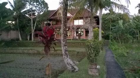 Prices & Lodge Reviews (ubud, Bali