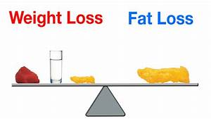 U0026quot The Basics Of Losing Body Fat U0026quot  By James Barnum