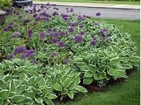 flower bed designs Desiging A Perennial Flower Bed - Glenns Garden Gardening Blog