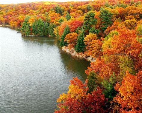 beautiful fall colors cindy adkins art books tea savouring autumn