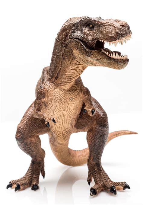 Dinosaurs Facts Kidspressmagazinecom