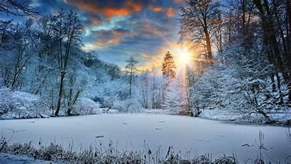 Winter Snow 4k Landscape Trees Wallpapers Sunbeams