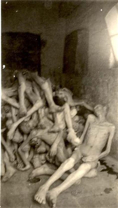 Les 26 meilleures images du tableau Dachau : les bourreaux ...