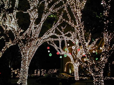dallas christmas light tours christmas light tours in the dallas fort worth area