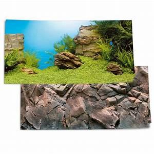 Pflanzen Für Aquarium : juwel fotorueckwand pflanzen steine 100x50cm fuer aquarium poster 1 l g nstig kaufen bei ~ Buech-reservation.com Haus und Dekorationen