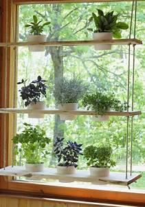 Blumen Für Fensterbank : h ngende zimmerpflanzen bilder von anreizenden blumenampeln deko objekte pinterest ~ Markanthonyermac.com Haus und Dekorationen