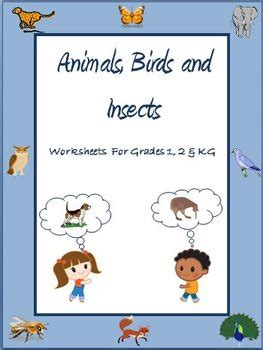 animals birds  insects worksheets  grade