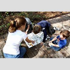 Christian Unschooling Third Culture School  Homeschooling  Pinterest  Homeschool, School And