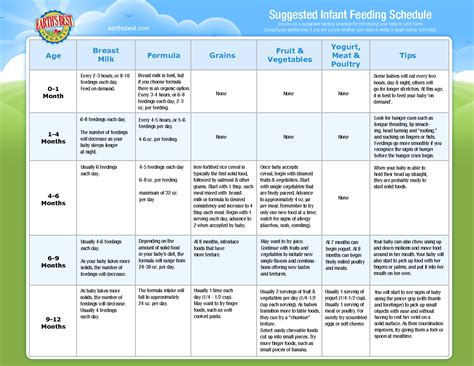 Infant Solid Food Feeding Schedule Baby Pinterest